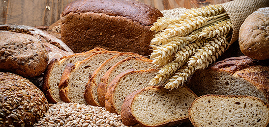 brood met gluten